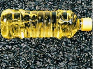 [SCM]actwin,0,0,0,0;The export of Sunflower oil from Ukraine is growing rapidly