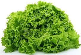 salat_5